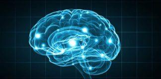 neuroni della sazietà